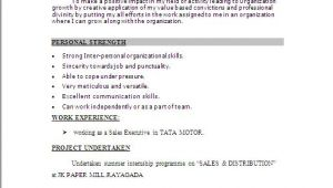 Best Resume format for Job Word File Resume Sample In Word Document Mba Marketing Sales