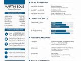 Best Resume format Word Document Cv Templates 61 Free Samples Examples format Download Free