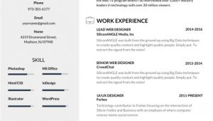 Best Resume Samples 50 Most Professional Editable Resume Templates for Jobseekers