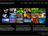 Best WordPress Templates for Photographers 35 Best WordPress Photography themes Designmaz