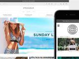 Big Cartel Store Templates Big Cartel Store Templates Wetheme Free Template Design