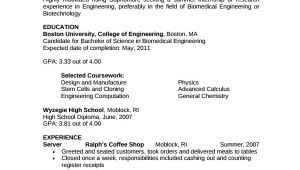 Biomedical Engineer Resume Sample Biomedical Engineer Resume 9 Free Documents