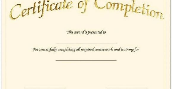 Blank Certificate Of Completion Template Blank Certificates Certificate Templates