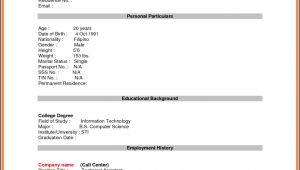 Blank Resume form for Job Application Blank Resume form for Job Application World Of Reference