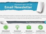 Boilerplate Email Template the Ultimate Email Newsletter Boilerplate Template
