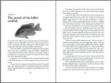 Book Writing Templates Microsoft Word Best Photos Of Book Template Microsoft Word Microsoft