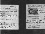Border Crossing Card Que Es Omnia Loza