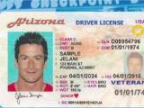 Border Security force Identity Card Arizona Residents Will Be Grounded without New Travel Id