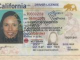 Border Security force Identity Card Californians Can Use Driver S License to Fly until Oct 1 2020