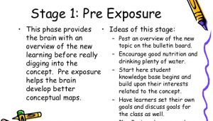 Brain Based Lesson Plan Template the 7 Stage Brain Based Learning Lesson Planning