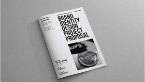 Brand Identity Proposal Template Brand Identity Proposal On Behance