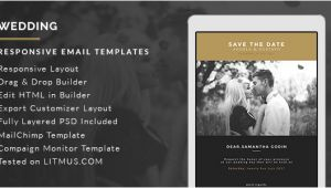 Bridesmaid Email Template Wedding Invitation Card Email Template Builder Access by