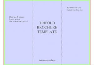 Brochure Templates Free Download for Word 2007 Blank Tri Fold Brochure Template Free Download theveliger