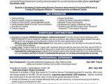 Building Material Sales Resume Sample 10 Best Best Banking Resume Templates Samples Images On