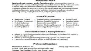 Business Analyst Resume Sample Pdf Sample Business Analyst Resume 8 Documents In Pdf Word