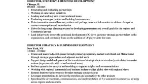 Business Development Resume Sample Business Development Resume Ipasphoto