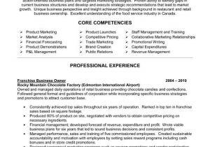 Business Owner Resume Sample Business Owner Resume Ingyenoltoztetosjatekok Com