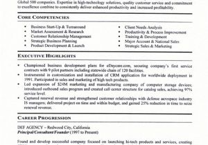 Business Owner Resume Sample Small Business Owner Resume Sample Best Professional
