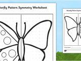 Butterfly Key Template butterfly Pattern Symmetry Worksheet Activity