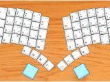 Butterfly Key Template Template butterfly Key Template Natural History Printable