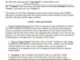 Buy and Sell Contract Template 20 Sample Buy Sell Agreement Templates Word Pdf Pages