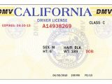 California Id Template Download 8 Blank Drivers License Template Psd Images north