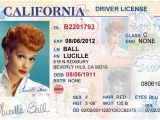 California Id Template Download California Driver 39 S License Editable Psd Template Download