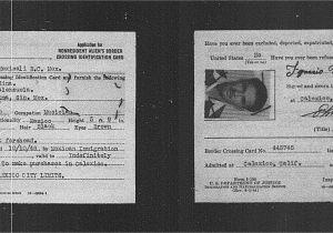 Can I Cross the Border with My Status Card Omnia Medina
