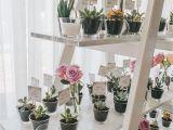 Card Holders for Flower Arrangements Kreativni Pokloni Za Goste Cvithappens Seating