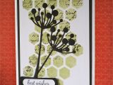 Card Ideas Using Flower Dies Love the soft Effect Achieved by Using A Stencil Spongeing