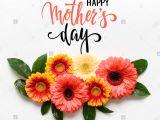 Card Picks for Flower Arrangements Happy Birthday Card orange Gerbera Stockfotos Happy