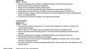Casino Host Resume Sample Casino Host Resume Samples Velvet Jobs