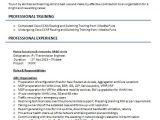 Ccna Resume format for Freshers Ccna Resume Samples top 5 Ccna Resume Templates In Doc