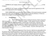 Ceo Employment Contract Template 22 Employment Agreement Samples Free Word Pdf format