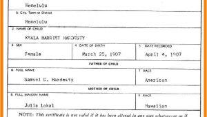 Certificate Of Live Birth Template Birth Certificate Template Template Trakore Document