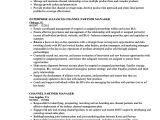 Channel Sales Manager Resume Sample Channel Partner Manager Resume Samples Velvet Jobs