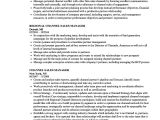 Channel Sales Manager Resume Sample Channel Sales Manager Resume Samples Velvet Jobs