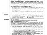 Channel Sales Manager Resume Sample Telecom Sales Resume Krida Info