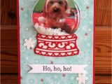 Christmas Card Ideas with Dog Pin by Jan Newcombe On Christmas Cards Christmas Cards