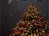 Christmas Greetings In A Card A Christmas Tree with Golden and Red Decoration the Korean