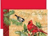 Christmas Ke Liye Greeting Card Masterpiece Studios Hollyville Greetings Boxed Cards Holiday Birds 18 Cards 18 Envelopes