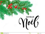 Christmas Quotes for Holiday Card Joyeux Noel French Merry Christmas Hand Drawn Quote