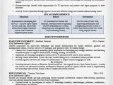 Cio Resume Samples Executive Resume Examples Writing Tips Ceo Cio Cto
