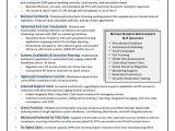 Cio Resume Samples Sample Cio Resume From Executive Resume Writer It Resume
