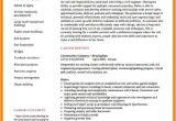 Civil Engineer Resume Model 5 Cv Models for Engineers theorynpractice