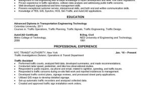 Civil Service Resume Sample Civil Service Resume Best Resume Gallery