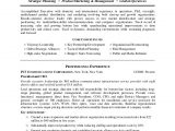 Co Founder Resume Sample Ceo Resume Sample