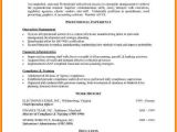 Combination Resume format Word 5 Functional Resume Templates Free Professional Resume List