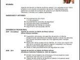 Como Preparar Un Resume Profesional Modelo Cv Agente De Servicio Al Cliente En Aerolineas