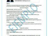 Como Preparar Un Resume Profesional Modelos De Curriculum Vitae Plantilla De Cv Gratis
